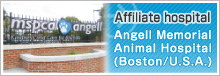 Hospitals in Liaison Angell Memorial Animal Hospital(Boston/U.S.A.)